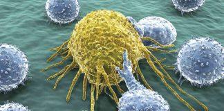 kanser hücresi LIF6